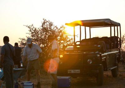 game drives african safari