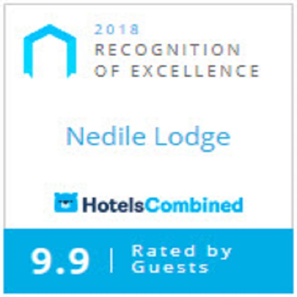 HotelsCombined - Recognition of Excellence Award 2018